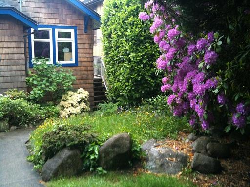 2012_05_30 Duc_1184 Front garden 04