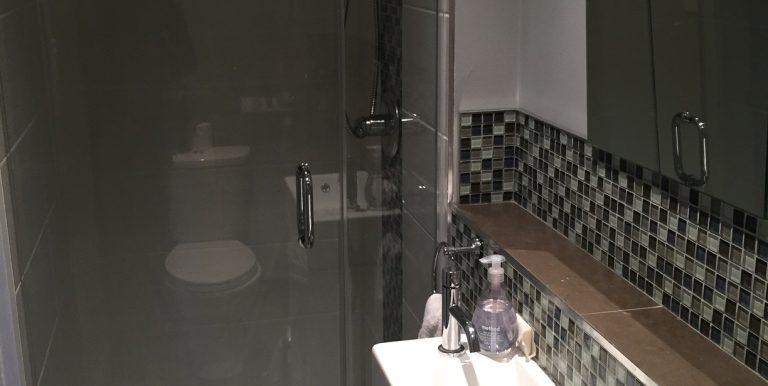 Main floor bathroom (shower)
