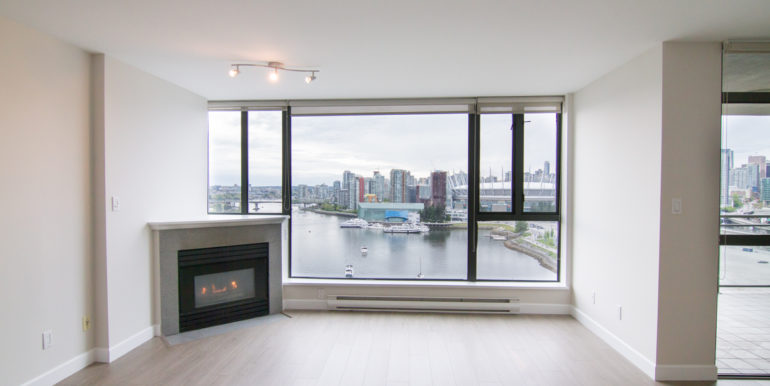 Living Area Fireplace Views