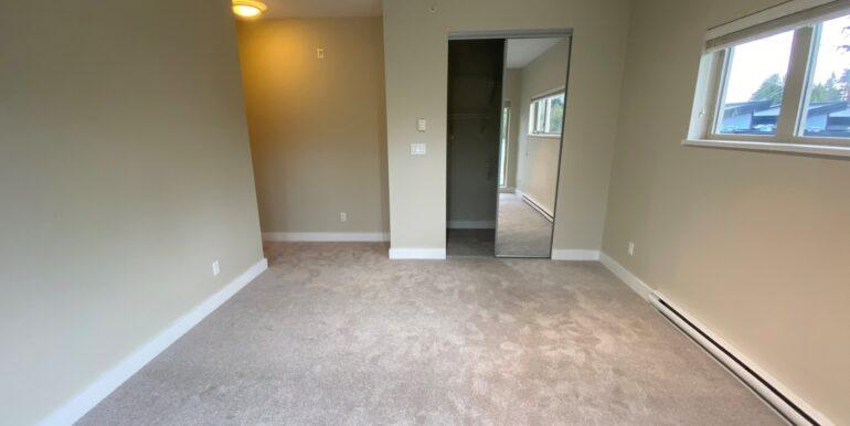new_carpet_3